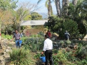 Course participants applying barrel compost at Huerta de Vinci gardens
