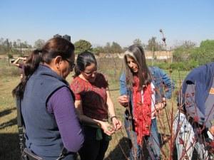 Discussions around hibiscus at Ana Luz's gardens in Guadalajara