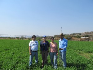 Visit to biodynamic alfalfa field of Abdias