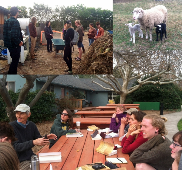 EcoFarm Trip Collage (counterclockwise): Working with the preparations at Camphill California, some new friends at the Sacramento Waldorf School, and a session with Dennis Klocek at Rudolf Steiner College (©Diana Schilling)