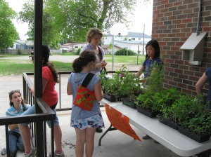 Kids Can Grow students marketing their classroom-grown seedlings in Espanola