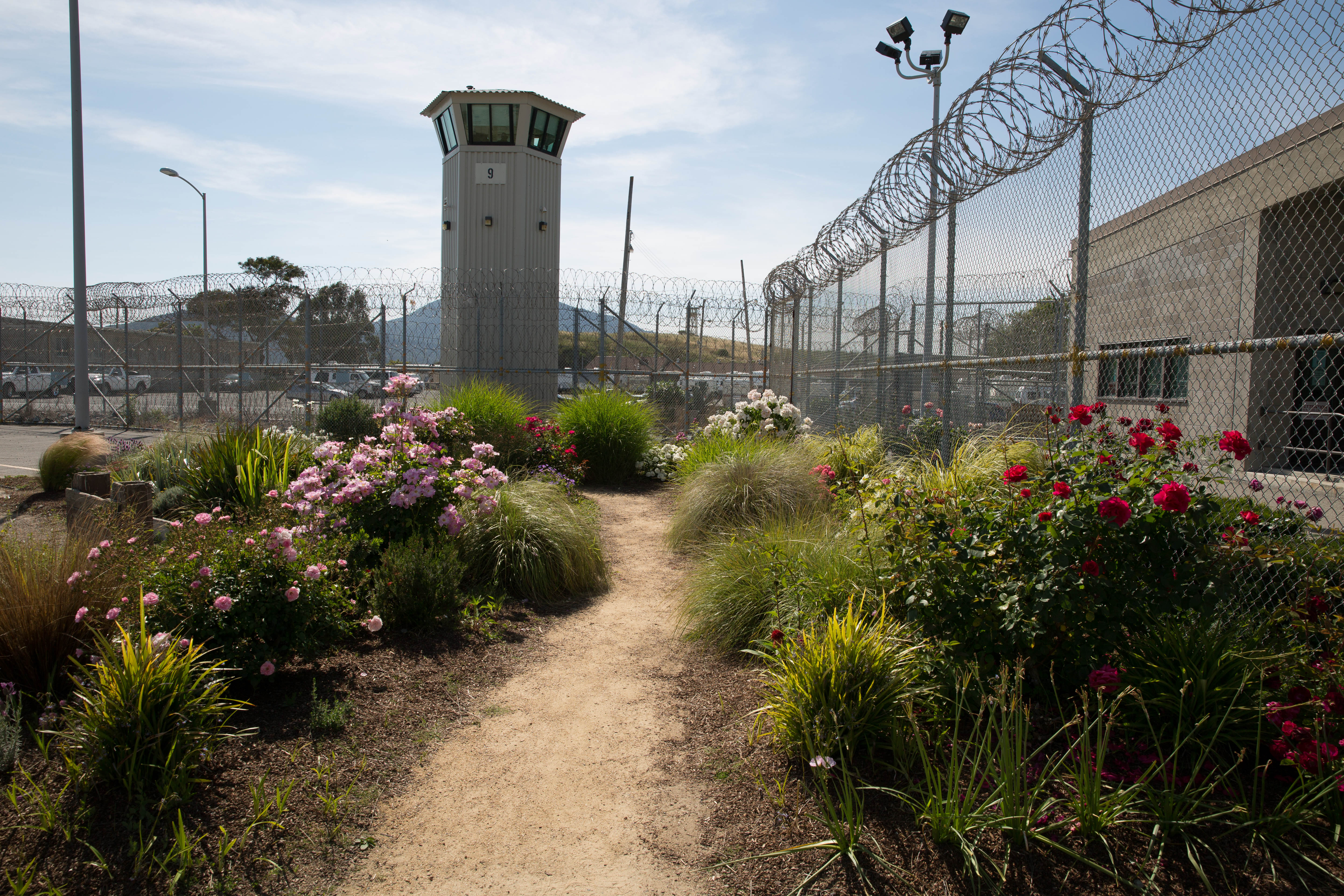 Prison gardens systems change from the ground up - The well tended perennial garden ...